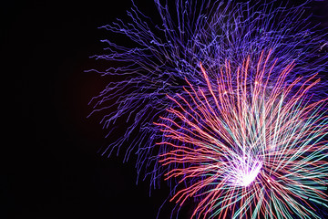 Colorful fireworks light up the night sky