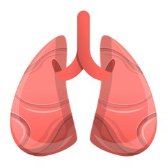 Human lungs icon. Cartoon of human lungs vector icon for web design isolated on white background