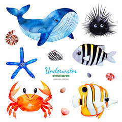 Underwater creatures.Watercolor collection with multicolored coral fishes.shells,crab,whale,starfish,urchin etc!Perfect for invitations,party decorations,printable,craft project,greeting cards,sticker
