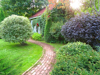 path in a country green yard