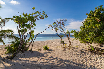 View of tropical beach on the Ditaytayan island, Busuanga, Palawan, Philippines. Beautiful tropical island with sand beach, palm trees. Travel concept.