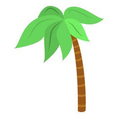 Palm tree icon. Isometric of palm tree vector icon for web design isolated on white background