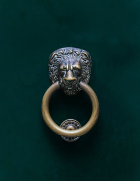 lion knocker on wooden door