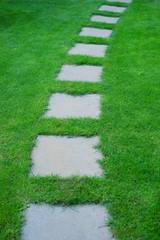 Obraz Beautiful lawn and path - fototapety do salonu