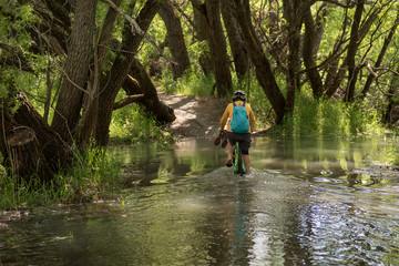 Female, baby boomer cycling through a flooded section of the bike path along the Clutha River near Clyde, New Zealand.