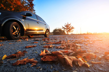 Car on the road with fallen leaves and trees against sky with sunset Wall mural