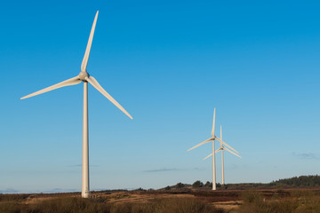 A scene depicting renewable energy and green energy with a group of three windmills under a beautiful blue sky in Northern Ireland