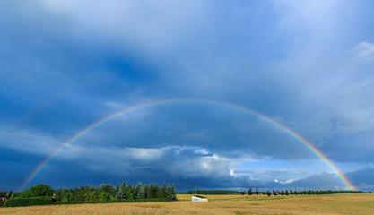 Regenbogen über Feld