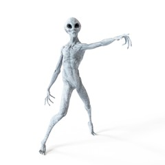 Illustration of a humanoid alien