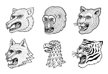 Head of Wild Animal Predator. Puma Wolf Fox Tiger Eagle Falcon Monkey Face. Japanese Style Portraits. Hand drawn Engraved Monochrome Old Sketch for retro logos. Close up.