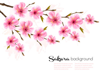 Wall Mural - Spring background with Sakura japan cherry branch. Vector