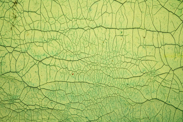 Crackle background texture