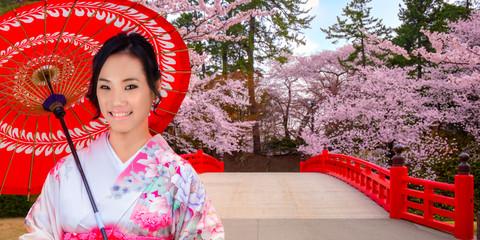 Japanese woman in Kimobno dress with Full bloom Sakura - Cherry Blossom  at Hirosaki park in Japan