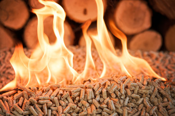 Burning pellets and pile of wood