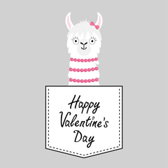 Happy Valentines Day. Llama alpaca face head in the pocket. Pink bow. Cute cartoon animals. Dash line. Kawaii character. White black color. T-shirt design. Baby gray background. Flat design.