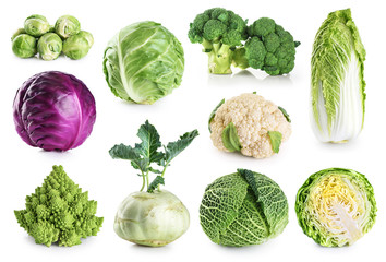 Photo sur Toile Bruxelles Cabbage collection isolated on white background.