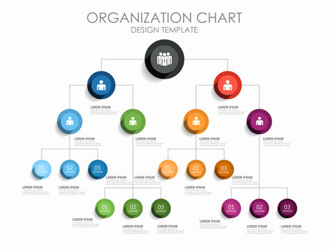 8 488 Best Organizational Chart Images Stock Photos Vectors Adobe Stock