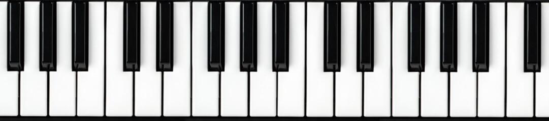 Synthesizer keyboard. Piano key