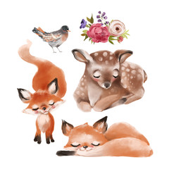 Set of cute forest, woodland baby animals - deer, foxes, bird and floral arrangement, bouquet, flowers composition