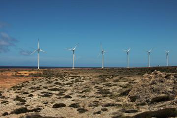 Aruba pale eoliche per energia alternativa, Caraibi