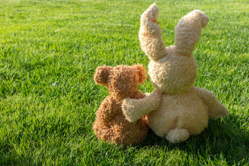 Toys bears sit on the lawn in the garden, the idea of Saint Valentine, love, care, friendship