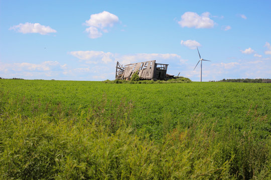 Wind Turbine. Wind turbine in an agricultural field with an abandoned barn in the American Midwest.