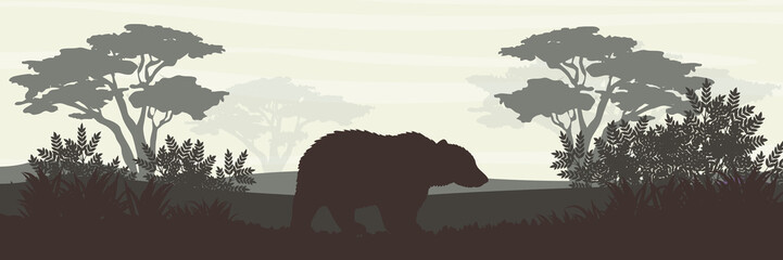 Silhouette. Big brown bear in the forest. Wild animals of Europe and America. Realistic Vector Landscape