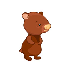 Spoed Foto op Canvas Kids Lovely bear vector illustration on white background. Woodland animal icon. Cute brown bear clipart.
