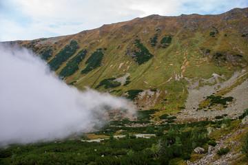 large misty cloud climbing mountain valley in slovakia, Tatra