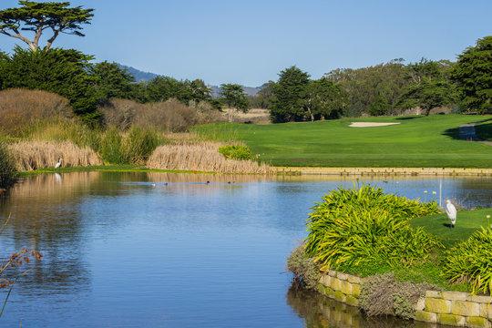 Man made pond near a golf course, California