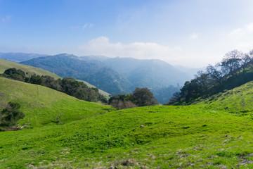 Retreating fog, Sierra Vista Open Space Preserve, south San Francisco bay, California