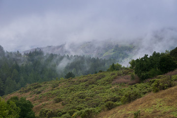 Fog rolling over hills and valleys, California