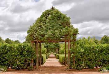 Cape Winelands - Babylonstoren - beautiful garden