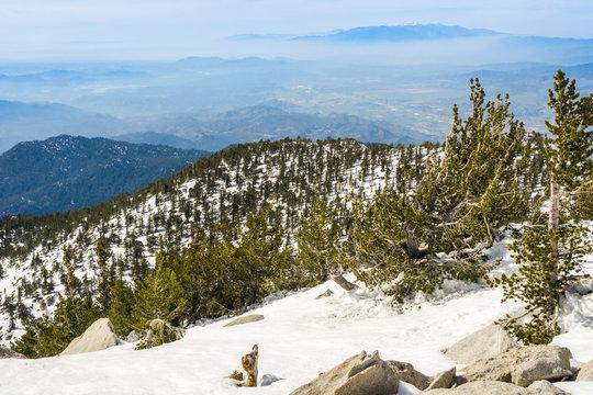 View towards Moreno Valley from Mount San Jacinto peak, California