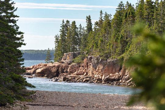 Pines frame jagged bluff on Maine coast