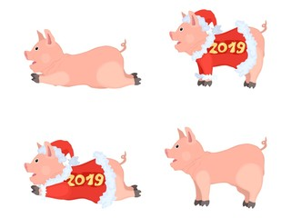 funny pigs cartoons drawing compilation multicolored