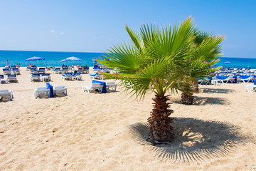 Alanya Kleopatra beach in summer resort in Turkey