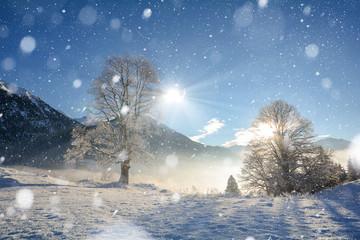 Traumhafte Winterlandschaft mit Schneefall und verschneiten Bäumen in den österreichischen Alpen bei Salzburg, Österreich
