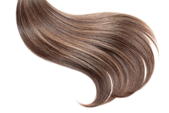 Brown hair, isolated on white background. Long ponytail