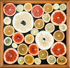 Citrus slices in picture frame. Fresh citrus fruits in different colours and sizes, cut into slices and laid out in a wooden black frame.