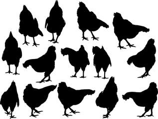 鶏のシルエット