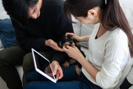恋人の使っているタブレットに興味を示す犬