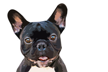 one brown emotional french bulldog on isolated background. drawn illustration for logos, t-shirts