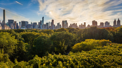 The skyline of Midtown from Central Park, New York City, USA