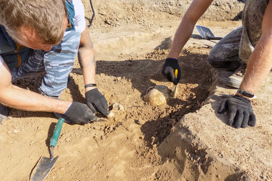 Archaeological excavations. Two archaeologists with tools conducting research on human bones on the ground tomb. Real process of digger. Outdoors, copy space.