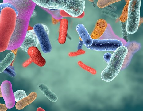Gut healthy bacteria 3d illustration.