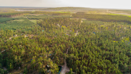 forest top view with lot of green trees showed from drone
