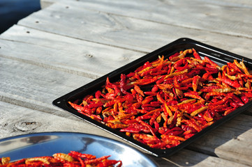Red Chilli on the plate