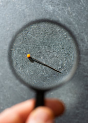 View small Needle through magnifying glass on a dark background. Concept for searching small object with magnifying glass.