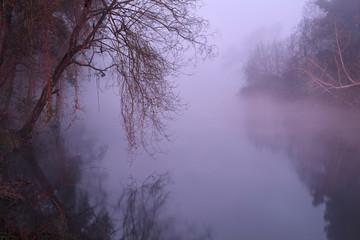Romantic foggy river at dawn